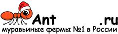 Муравьиные фермы AntFarms.ru - Владивосток